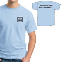 Picture of Gildan T-Shirt